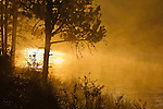 Sunrise and fog on the Deschutes River, La Pine State Park, Oregon.