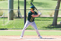 Oakland Athletics shortstop Kevin Merrell (4) at bat during an Instructional League game against the Los Angeles Dodgers at Camelback Ranch on September 27, 2018 in Glendale, Arizona. (Zachary Lucy/Four Seam Images)