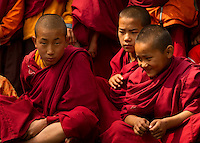A moment in the day of a Buddhist Monk, Sikkim, India