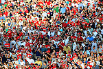 8 June 2010: Washington Nationals fans cheers during player introductions prior to a game against the Pittsburgh Pirates at Nationals Park in Washington, DC. The Nationals defeated the Pirates 5-2 in the series opener where pitching sensation Stephen Strasburg made his Major League debut, striking out 14 batters and notching his first win in the majors. Mandatory Credit: Ed Wolfstein Photo