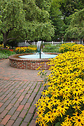 Flower gardens during the summer months at Prescott Park in Portsmouth, New Hampshire USA