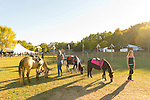 Old Bethpage, New York, U.S. 29th September 2013. The Pony Ride is one of the last rides open as closing time arrives at The Long Island Fair. A yearly event since 1842, the county fair is now held at a reconstructed fairground at Old Bethpage Village Restoration.
