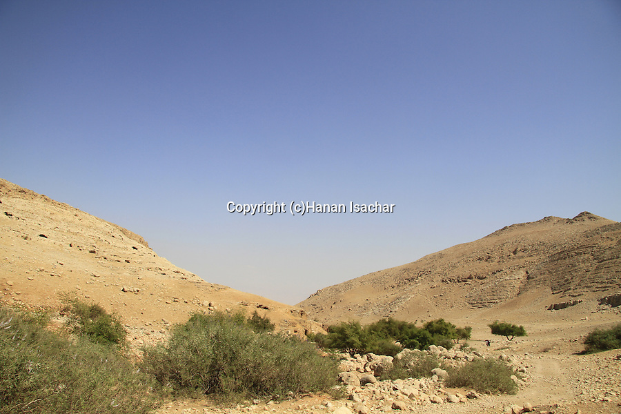 Samaria, Einot Petzael in Nahal Petzael