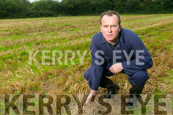 Eamonn Mc Elligott mixed farmer from Lixnaw