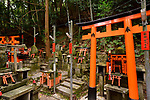 Thousands of small private worship Shinto shrines, Tsuka, at Fushimi Inari-Taisha head shrine in Fushimi Ward, Kyoto, Japan