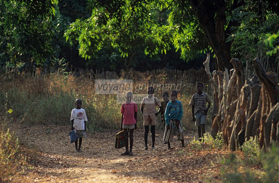 Afrique/Afrique de l'Ouest/Sénégal/Basse-Casamance/Dioher : Enfants rentrant de l'école