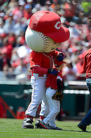 Cincinnati Reds mascot and fan during a game against the Miami Marlins at Great American Ball Park on April 20, 2013 in Cincinnati, Ohio.  Cincinnati defeated Miami 3-2 in 13 innings.  (Mike Janes/Four Seam Images)