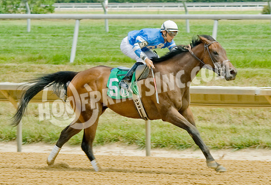 Sweet Valor winning at Delaware Park on 7/11/12