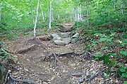 Stone steps along Kinsman Ridge Trail in Franconia Notch State Park of the White Mountains, New Hampshire USA during the summer months. A herd path has formed on the left hand side from hikers avoiding the stone steps.