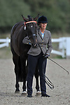 Class 4. Pre - Senior. Ridden. Showing. Brook Farm Training Centre. Essex. UK. 09/09/2018. ~ MANDATORY Credit Garry Bowden/Sportinpictures - NO UNAUTHORISED USE - 07837 394578