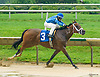 Mom's a Cougar winning at Delaware Park on 7/6/17 This is Abel Castellano's 1st win as a trainer!