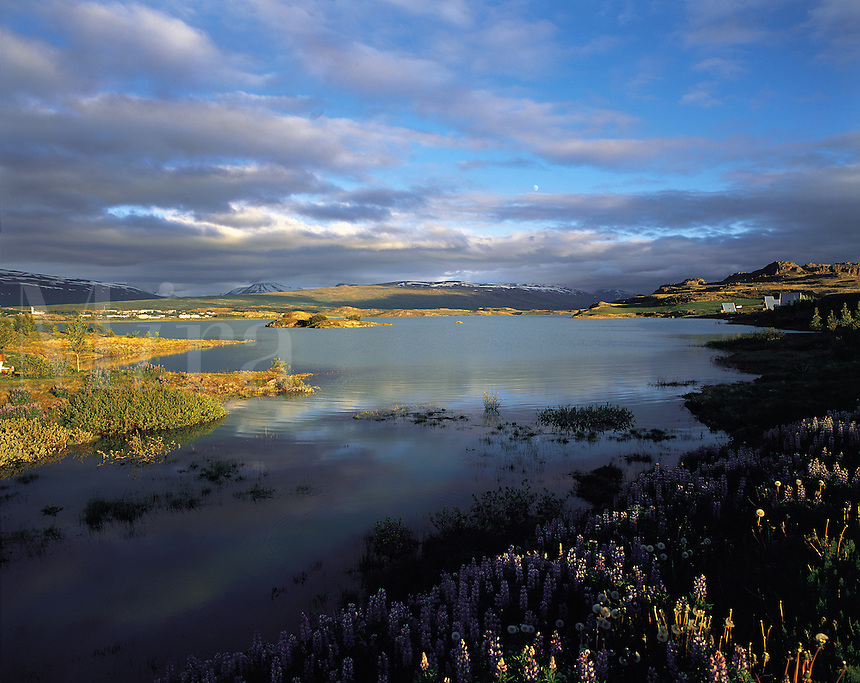 Evening light on Lagarfljot Lake, looking across towards Egillstadir, in the fjord region of eastern Iceland