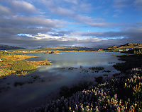 Evening light on Lagarfljot Lake, looking across towards Egillstadir, in the fjord region of eastern Iceland