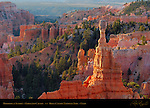 Hoodoos at Sunrise, Fairyland Canyon, Bryce Canyon National Park, Utah