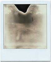 The Hunt - Polaroids