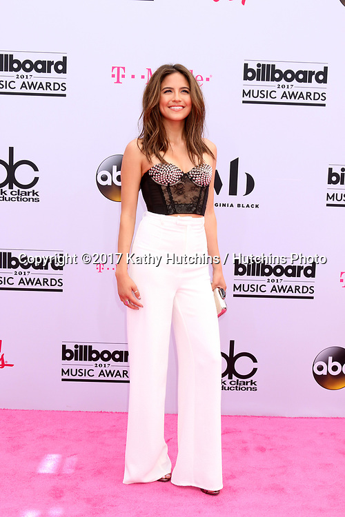 LAS VEGAS - MAY 21:  Erin Lim at the 2017 Billboard Music Awards - Arrivals at the T-Mobile Arena on May 21, 2017 in Las Vegas, NV