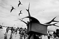 A fisherman carries a box of the Dorado fish catch on the beach of Puerto López, Ecuador, 6 April 2012.