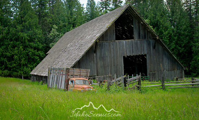 Idaho, North, Sagle. A country scene with rustic barn and weathered vintage truck in a field.