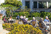 Plaza de Los Flores, Estepona, Malaga, Spain, February, 2019, cafe, restaurant, tourists, holidaymakers, relaxing, al fresco201902080369<br />