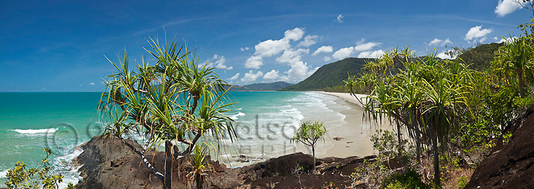 View through pandanus palms to Noah Beach.  Daintree National Park, Queensland, Australia