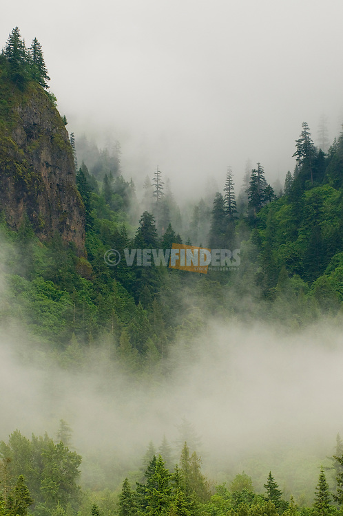 Cliffs with Fog in the Columbia River Gorge