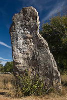 Europe/France/Midi-Pyrénées/46/Lot/Livernon: Menhir de Belinac