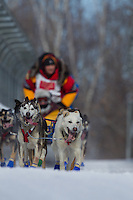Mitch Seavey on the bike trail in mid-town Anchorage during the ceremonial start of the 2011 Iditarod
