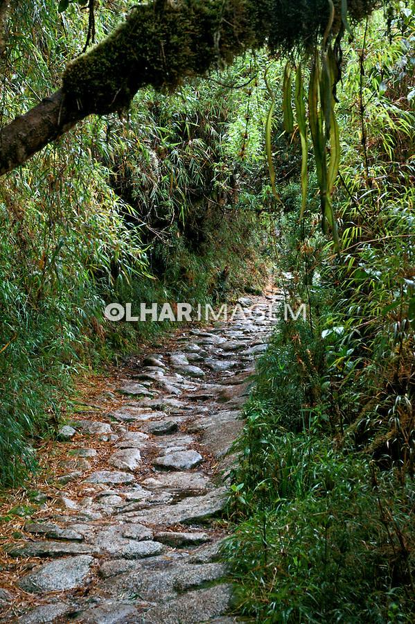 Caminho Trilha Inca. Peru. 2006. Foto de Flávio Bacellar.
