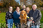 Orla, Christine, Flor, Eilish and Paddy O'Sullivan Kenmare with their Golden Retriever Tasha who is a breeder for the Irish Guide Dogs Association