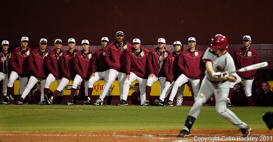 TALLAHASSEE, FL 10-FSU-B.C. BASE031111 CH-Florida State players line the edge of the dug out to watch the final Boston College batter, Rob Moir strike out Friday at Dick Howser Stadium in Tallahassee. The Seminoles beat the Eagles 3-1..COLIN HACKLEY PHOTO