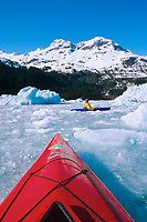 Kayakers paddle in glacier ice bergs from recently calved ice from Meares Glacier in Meares Inlet, Prince William Sound, Alaska.