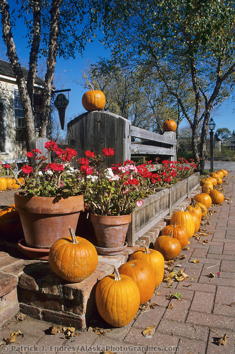 Pumpkins and the autumn harvest season in Wisconsin