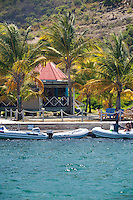 Foxy's Taboo<br />