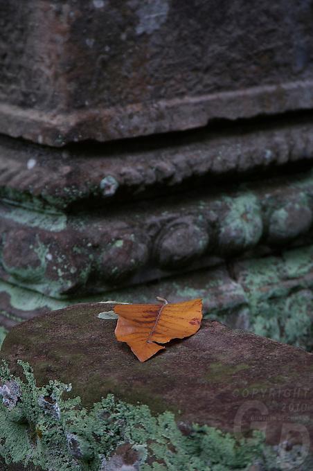 Preah Khan Temple Siem Reap,Cambodia