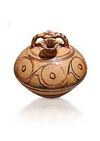 Minoan decorated stirrup jar, Malia Palace 1600-1450 BC; Heraklion Archaeological  Museum, white background.