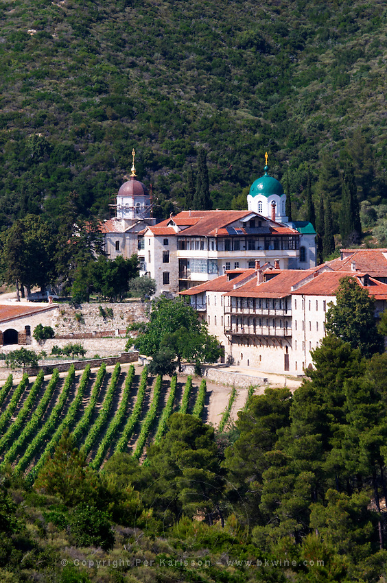 The Tsantalis sponsored monastery. Vineyard. Mount Athos. Tsantali Vineyards & Winery, Halkidiki, Macedonia, Greece. Metoxi Chromitsa of St Panteleimon monastery.