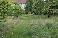A mown grass pathway leading down to the house is bordered by wildflowers in the orchard at Great Dixter