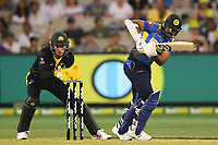 1st November 2019; Melbourne Cricket Ground, Melbourne, Victoria, Australia; International T20 Cricket, Australia versus Sri Lanka; Shehan Jayasuriya of Sri Lanka plays a defensive stroke - Editorial Use