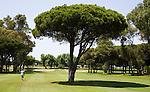 Iberostar Centro Golf Course
