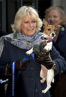 Camilla, The Duchess of Cornwall Visits Battersea Dogs and Cats Home - London