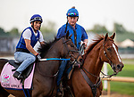 LOUISVILLE, KENTUCKY - MAY 01: Lady Apple prepares for the Kentucky Oaks at Churchill Downs in Louisville, Kentucky on May 01, 2019. Evers/Eclipse Sportswire/CSM