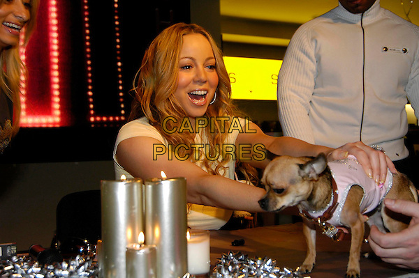 "MARIAH CAREY.meets fans and signs copies of her award-winning album ""The Emancipation Of Mimi: Ultra Platinum Edition"".at HMV Oxford Street .London England 4 December 2005.Ref:HT.half length holding little miniature toy dog puppy cream fitted t-shirt  curls curly ringlets hair.www.capitalpictures.com.sales@capitalpictures.com.©Capital Pictures"