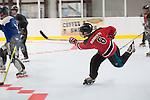 hockey-2011