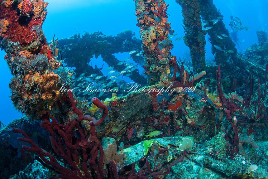 Wreck of the RMS Rhone<br /> Salt Island<br /> BVI
