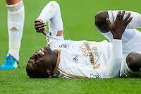 Modu Barrow of Swansea winces in agony during the Barclays Premier League match between Swansea City and Everton played at the Liberty Stadium, Swansea  on September 19th 2015