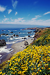 California, CA, Sonoma Coast, Bodega Bay, Bodega Head beach and rock formations..Photo  cabeac205..Photo Copyright: Lee Foster, www.fostertravel.com, 510-549-2202, lee@fostertravel.com