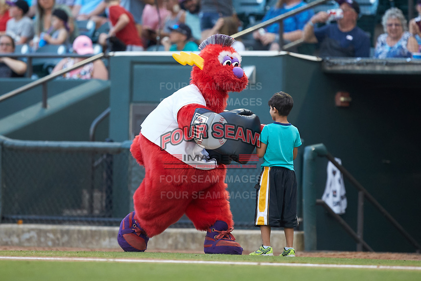 "Winston-Salem Dash mascot ""Bolt"" entertains fans between innings of the Carolina League game against the Carolina Mudcats at BB&T Ballpark on June 1, 2019 in Winston-Salem, North Carolina. The Dash defeated the Mudcats 5-4 in game two of a double header. (Brian Westerholt/Four Seam Images)"