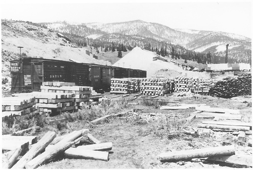 Mine prop sawmill on the end of the D&amp;RGW wye tail at Pitkin.<br /> D&amp;RGW  Pitkin, CO  Taken by Ray, Bob - ca. 1929