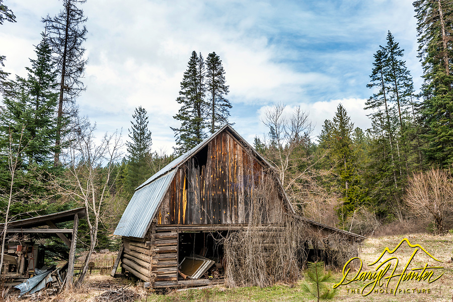 Old log barn in the forest of Coeur d'Alene Idaho