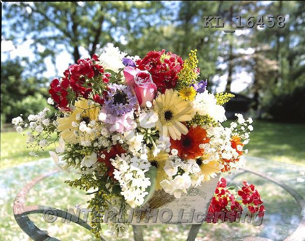 Interlitho, FLOWERS, BLUMEN, FLORES, photos+++++,flowers, pot,KL16458,#F#